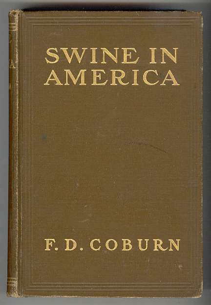 Image for Swine in America: A Text-book for the Breeder, Feeder & Student