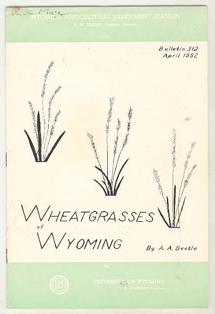 Image for Wheatgrasses of Wyoming, Bulletin 312, April 1952